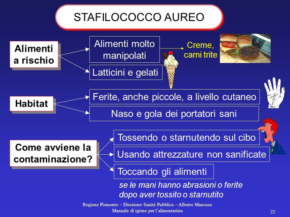 Regione Piemonte – Direzione Sanità Pubblica – Alberto Mancuso Manuale di igiene per l'alimentarista 22 Alimenti a rischio Habitat Come avviene la contaminazione.