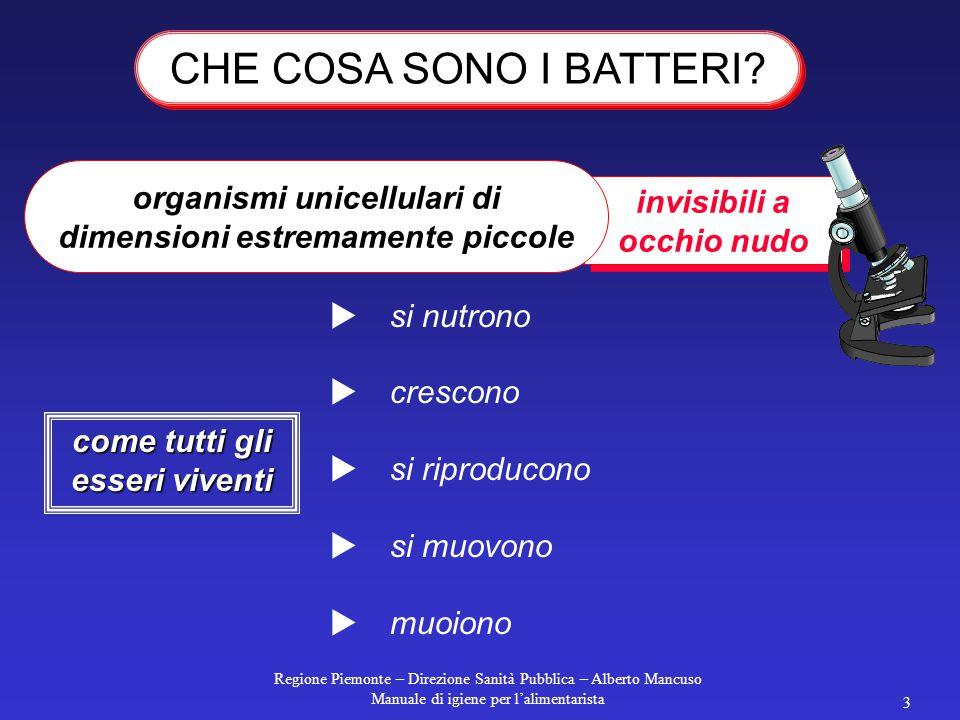 Regione Piemonte – Direzione Sanità Pubblica – Alberto Mancuso Manuale di igiene per l'alimentarista 2 TOSSINE Sostanze tossiche prodotte da alcuni mi
