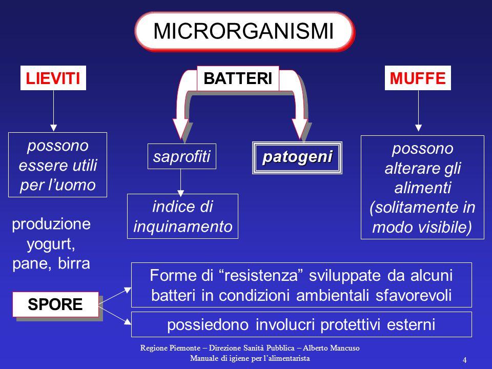 Regione Piemonte – Direzione Sanità Pubblica – Alberto Mancuso Manuale di igiene per l'alimentarista 3  si nutrono  crescono  si riproducono  si m