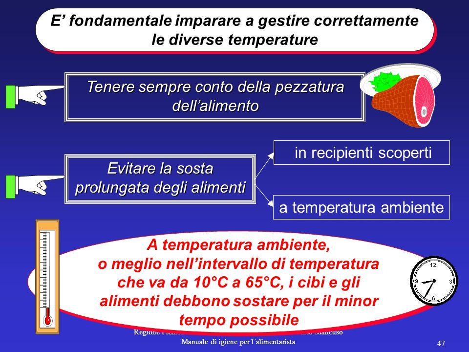 Regione Piemonte – Direzione Sanità Pubblica – Alberto Mancuso Manuale di igiene per l'alimentarista 46 L'IMPORTANZA DELLE TEMPERATURE