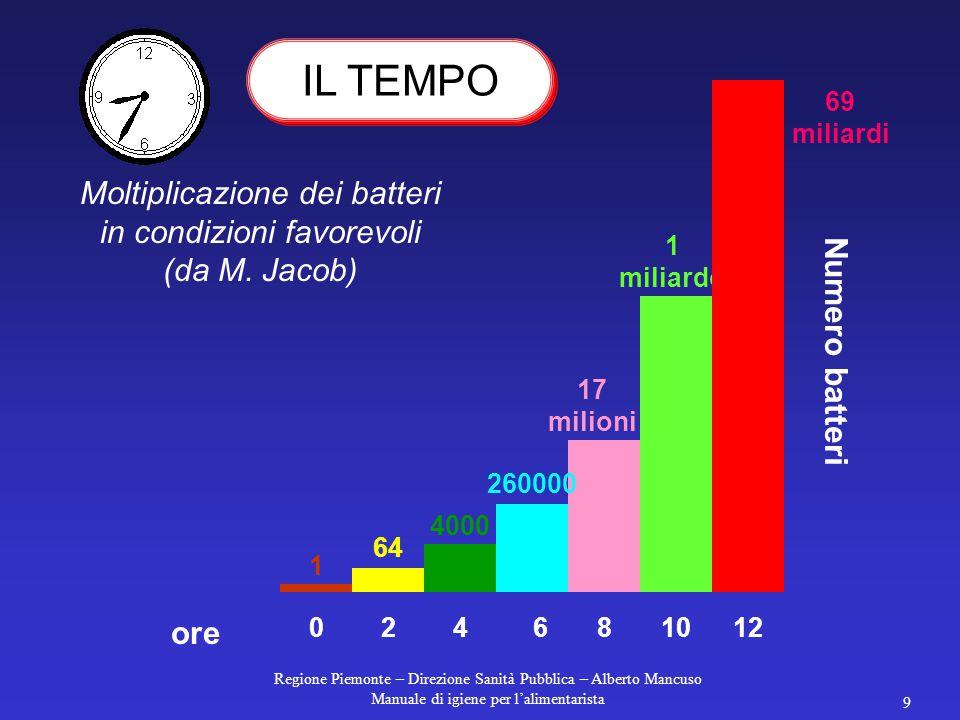 Regione Piemonte – Direzione Sanità Pubblica – Alberto Mancuso Manuale di igiene per l'alimentarista 9 Moltiplicazione dei batteri in condizioni favorevoli (da M.