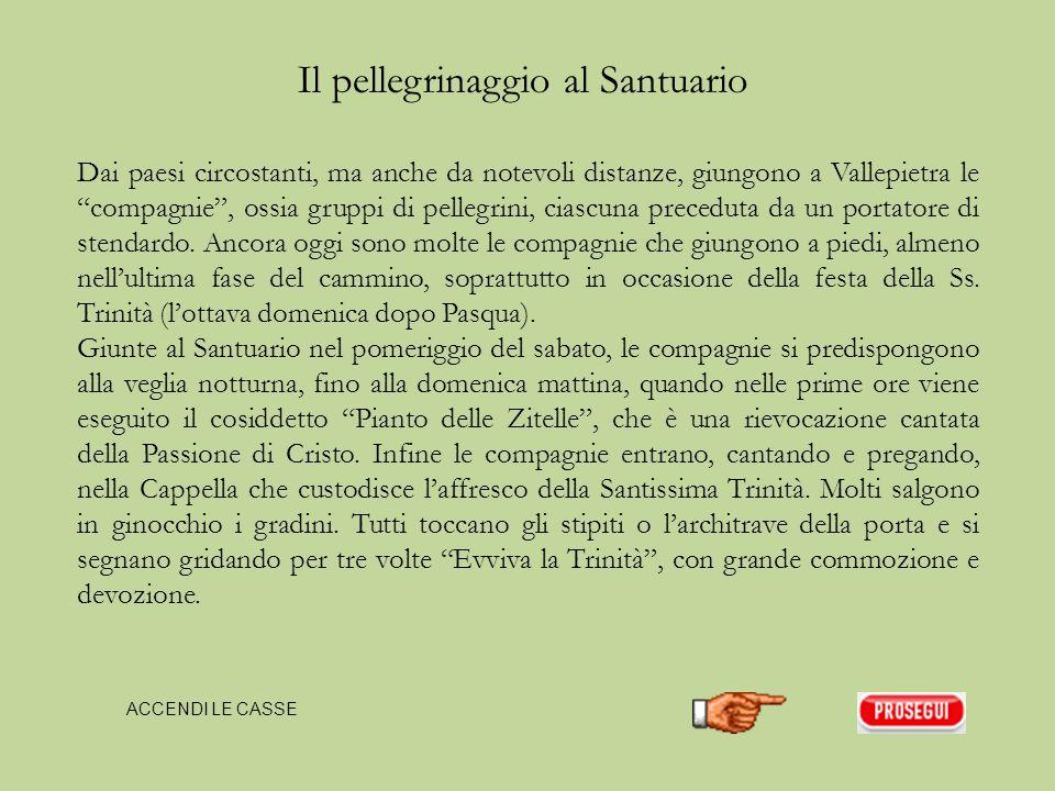 Il Santuario della Santissima Trinità si trova immerso tra boschi di faggi, a 1337 metri s.l.m., nel Parco Regionale dei Monti Simbruini, nel territorio del comune di Vallepietra (m 825 s.l.m.), in provincia di Roma.