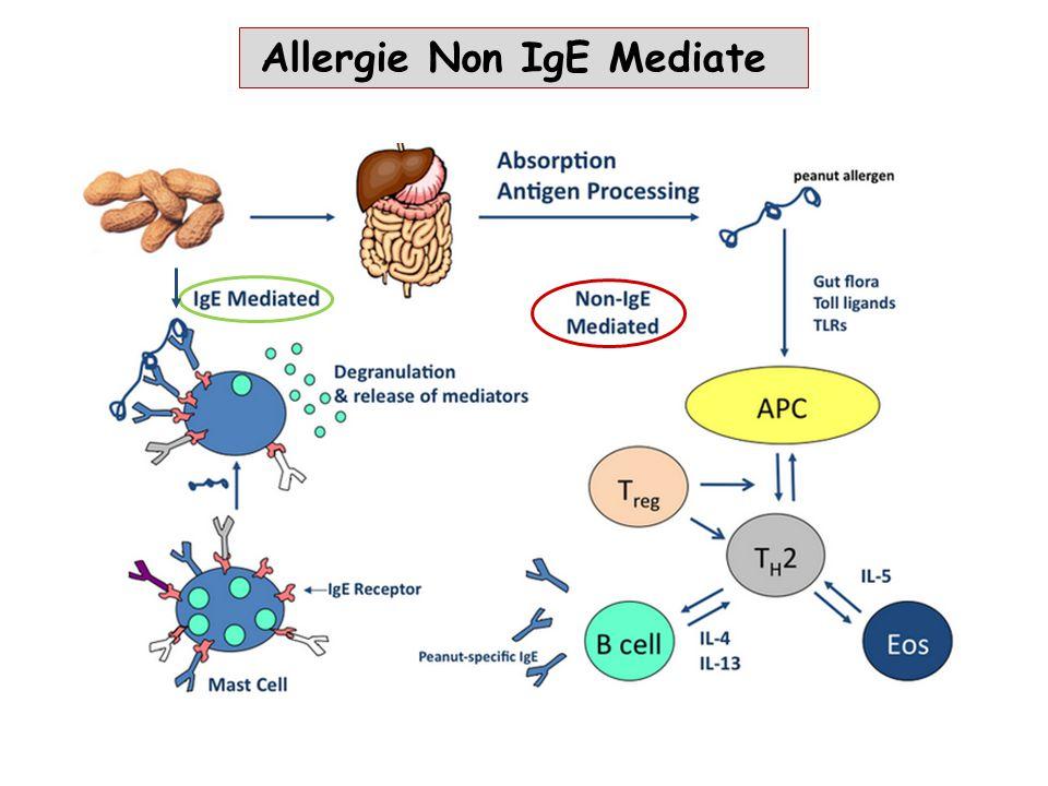 Allergie Non IgE Mediate
