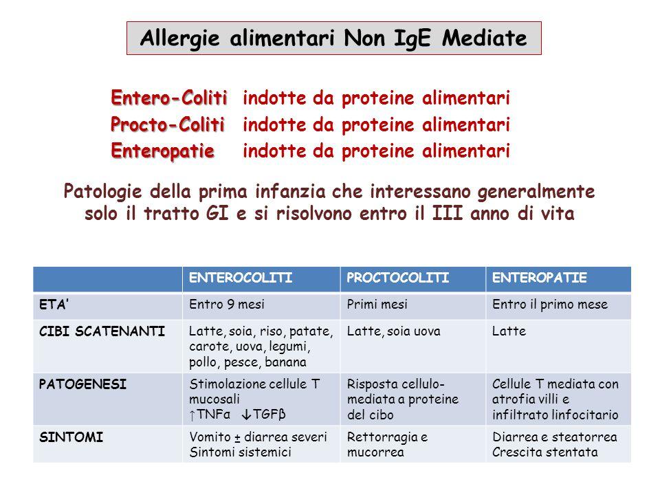Entero-Coliti Entero-Colitiindotte da proteine alimentari Procto-Coliti Procto-Colitiindotte da proteine alimentari Enteropatie Enteropatieindotte da