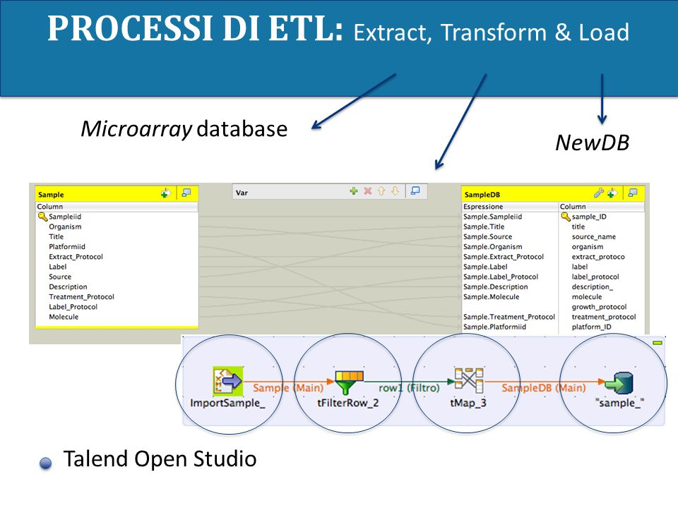 PROCESSI DI ETL: Extract, Transform & Load Talend Open Studio Microarray database NewDB