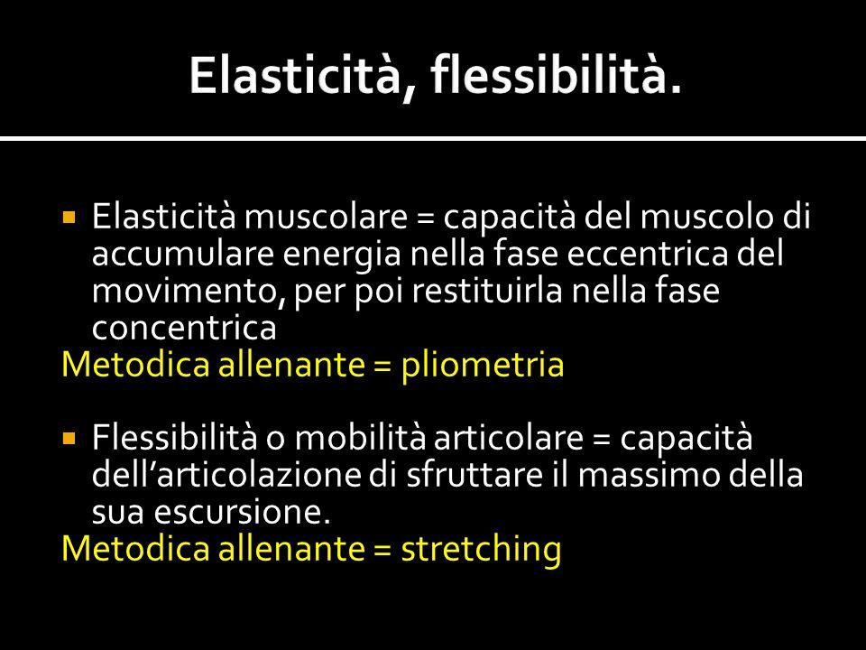  Elasticità muscolare = capacità del muscolo di accumulare energia nella fase eccentrica del movimento, per poi restituirla nella fase concentrica Me