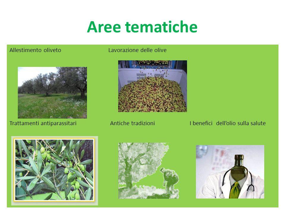 Aree tematiche Allestimento oliveto Lavorazione delle olive Trattamenti antiparassitari Antiche tradizioni I benefici dell'olio sulla salute