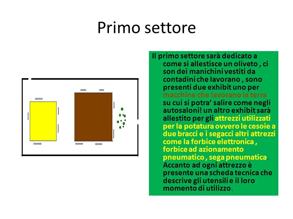 Primo settore Il primo settore sarà dedicato a come si allestisce un oliveto, ci son dei manichini vestiti da contadini che lavorano, sono presenti du