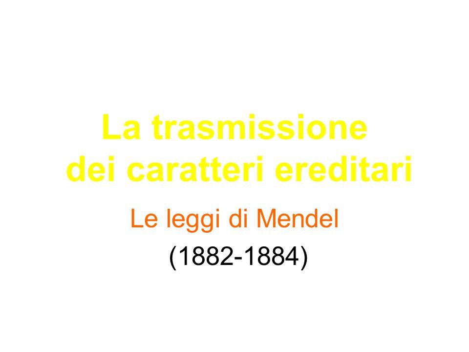 La trasmissione dei caratteri ereditari Le leggi di Mendel (1882-1884)