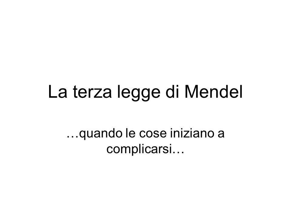 La terza legge di Mendel …quando le cose iniziano a complicarsi…