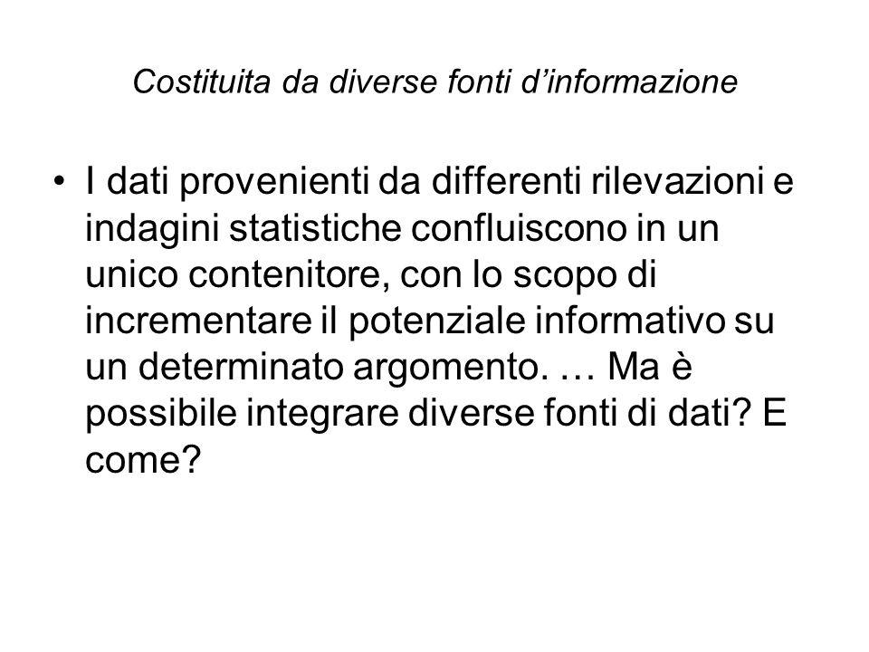 Costituita da diverse fonti d'informazione I dati provenienti da differenti rilevazioni e indagini statistiche confluiscono in un unico contenitore, c