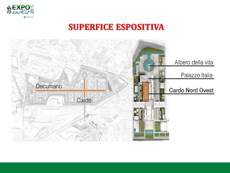 SUPERFICE ESPOSITIVA
