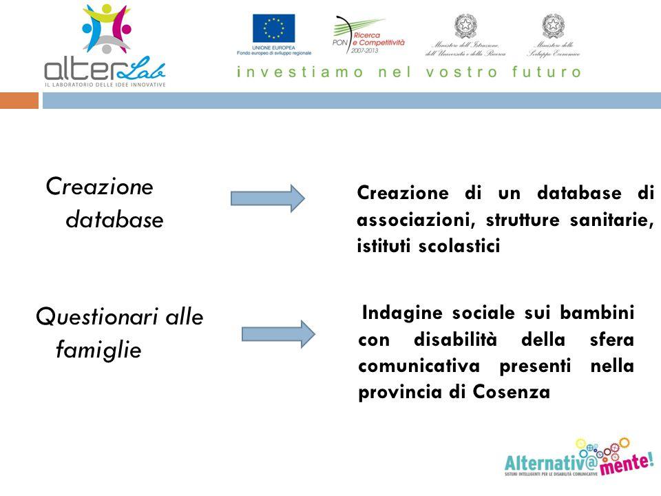 Creazione database Questionari alle famiglie Creazione di un database di associazioni, strutture sanitarie, istituti scolastici Indagine sociale sui b