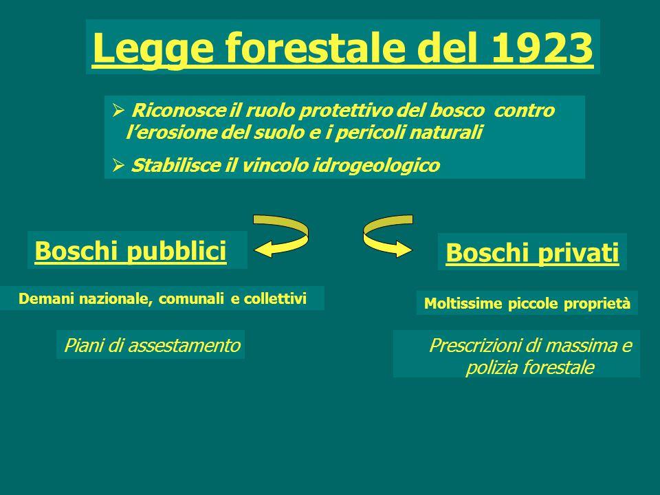 Boschi pubblici Prescrizioni di massima e polizia forestale Legge forestale del 1923  Riconosce il ruolo protettivo del bosco contro l'erosione del s