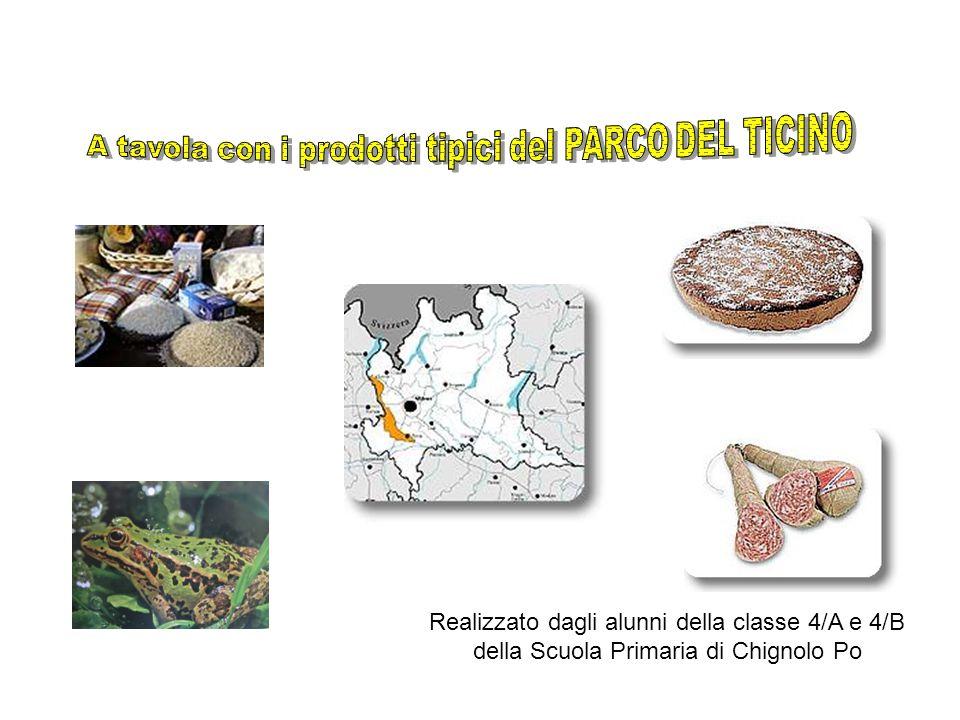Introduzione Siamo gli alunni della 4/A e 4/B della Scuola Primaria di Chignolo Po, in provincia di Pavia.
