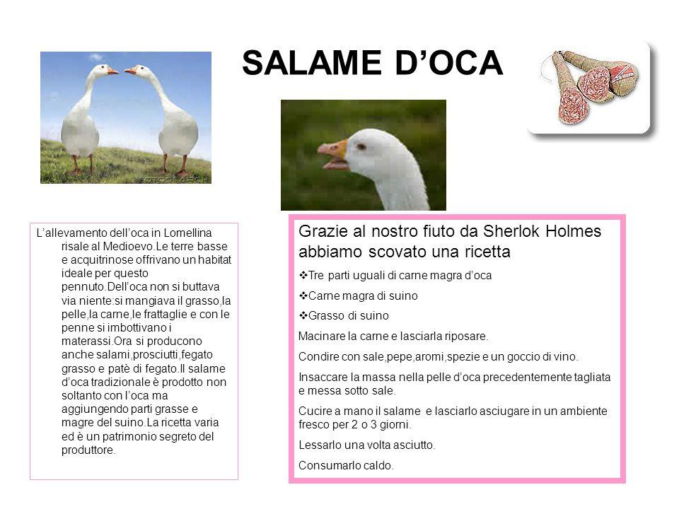 SALAME D'OCA L'allevamento dell'oca in Lomellina risale al Medioevo.Le terre basse e acquitrinose offrivano un habitat ideale per questo pennuto.Dell'