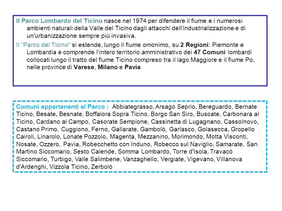 Il Parco Lombardo del Ticino nasce nel 1974 per difendere il fiume e i numerosi ambienti naturali della Valle del Ticino dagli attacchi dell industrializzazione e di un urbanizzazione sempre più invasiva.