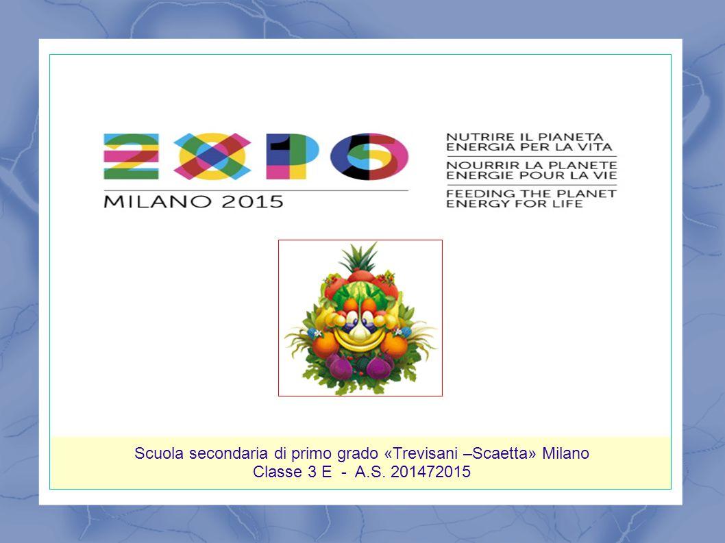 Scuola secondaria di primo grado «Trevisani –Scaetta» Milano Classe 3 E - A.S. 201472015