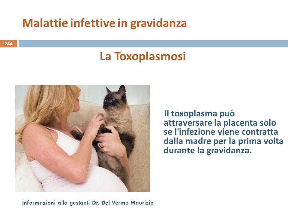 244 Informazioni alle gestanti Dr. Del Verme Maurizio La Toxoplasmosi Il toxoplasma può attraversare la placenta solo se l'infezione viene contratta d
