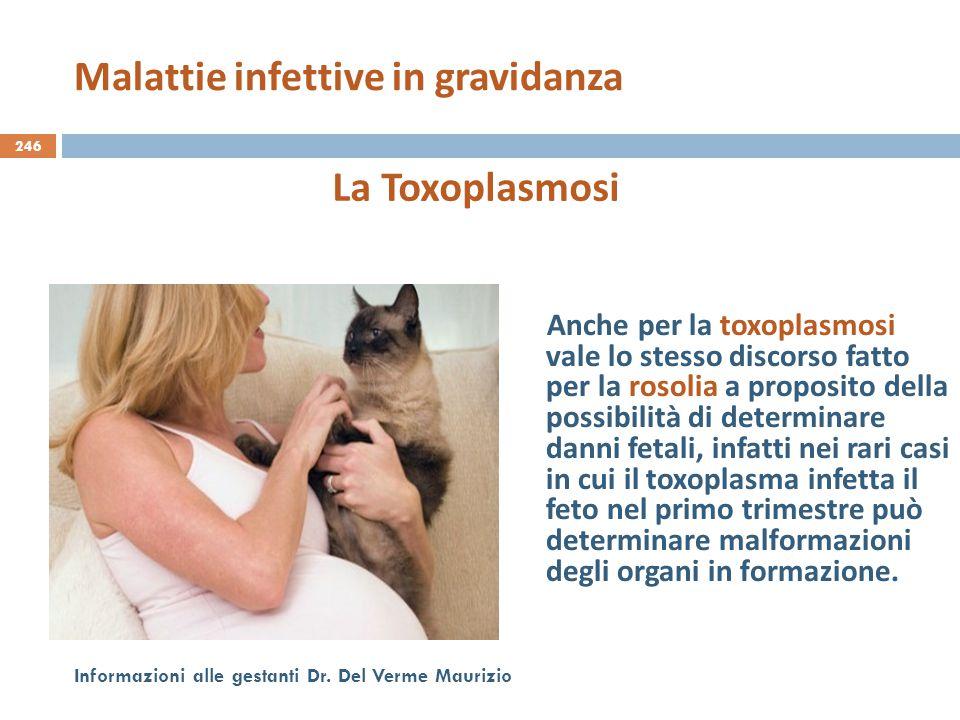246 Informazioni alle gestanti Dr. Del Verme Maurizio La Toxoplasmosi Anche per la toxoplasmosi vale lo stesso discorso fatto per la rosolia a proposi