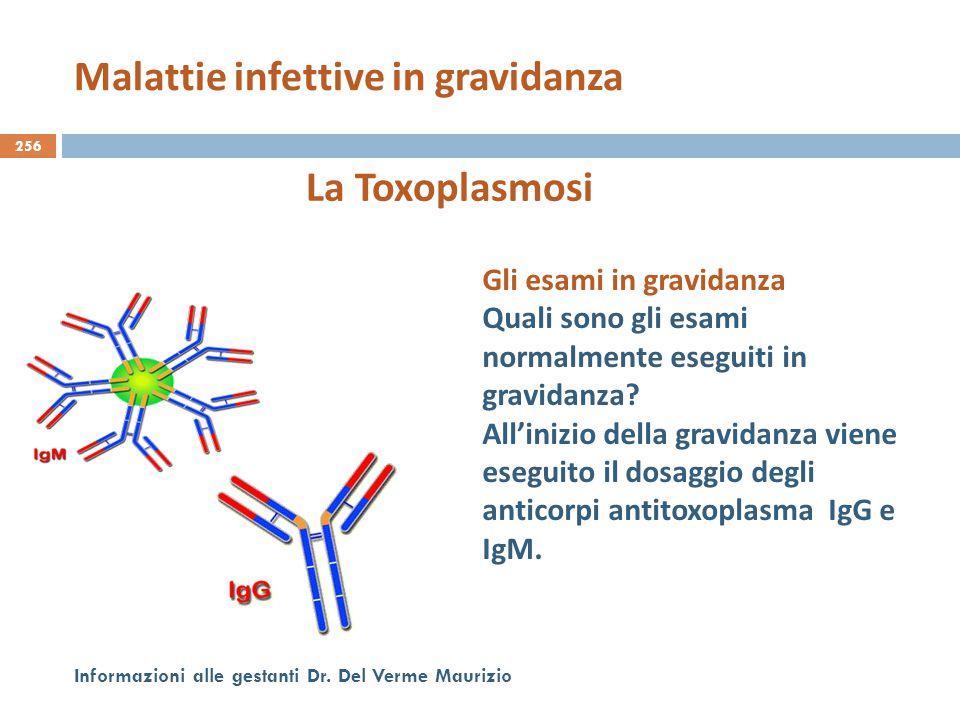 256 Informazioni alle gestanti Dr. Del Verme Maurizio La Toxoplasmosi Gli esami in gravidanza Quali sono gli esami normalmente eseguiti in gravidanza?