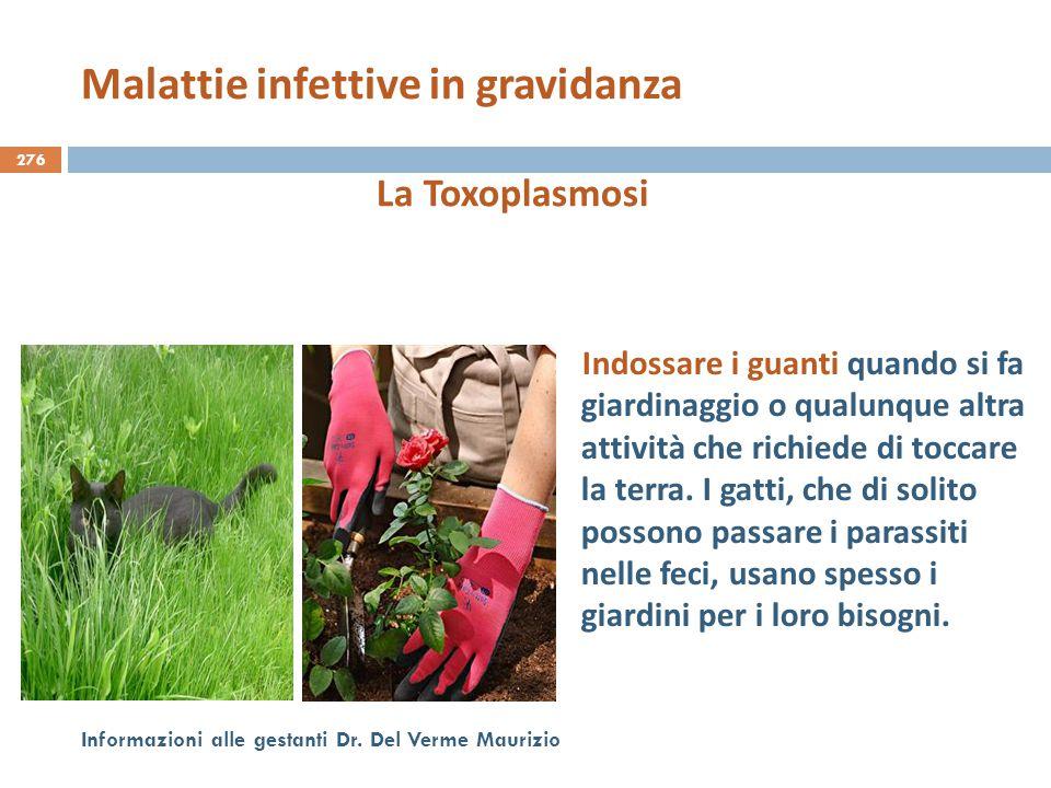 276 Informazioni alle gestanti Dr. Del Verme Maurizio La Toxoplasmosi Indossare i guanti quando si fa giardinaggio o qualunque altra attività che rich