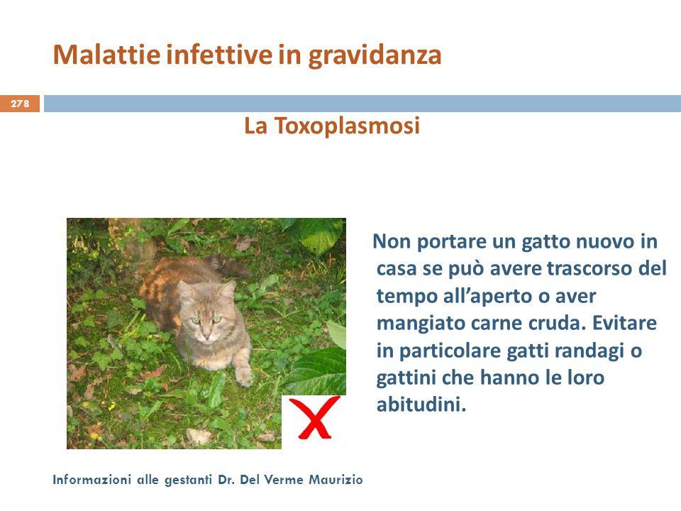 278 Informazioni alle gestanti Dr. Del Verme Maurizio La Toxoplasmosi Non portare un gatto nuovo in casa se può avere trascorso del tempo all'aperto o