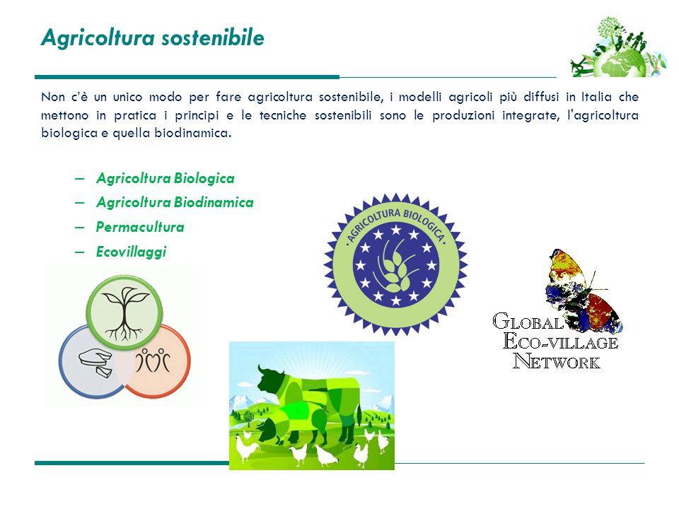 Agricoltura sostenibile Non c'è un unico modo per fare agricoltura sostenibile, i modelli agricoli più diffusi in Italia che mettono in pratica i prin