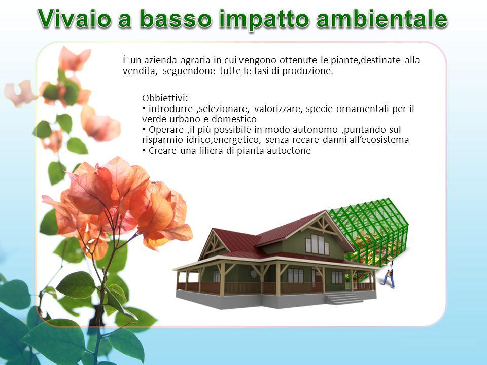 È un azienda agraria in cui vengono ottenute le piante,destinate alla vendita, seguendone tutte le fasi di produzione.