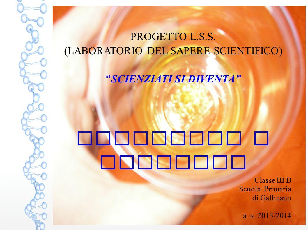 """PROGETTO L.S.S. (LABORATORIO DEL SAPERE SCIENTIFICO) """" SCIENZIATI SI DIVENTA"""" SOLUZIONI E MISCUGLI Classe III B Scuola Primaria di Gallicano a. s. 201"""