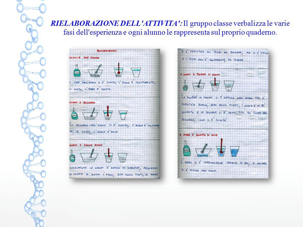 RIELABORAZIONE DELL'ATTIVITA': Il gruppo classe verbalizza le varie fasi dell'esperienza e ogni alunno le rappresenta sul proprio quaderno.
