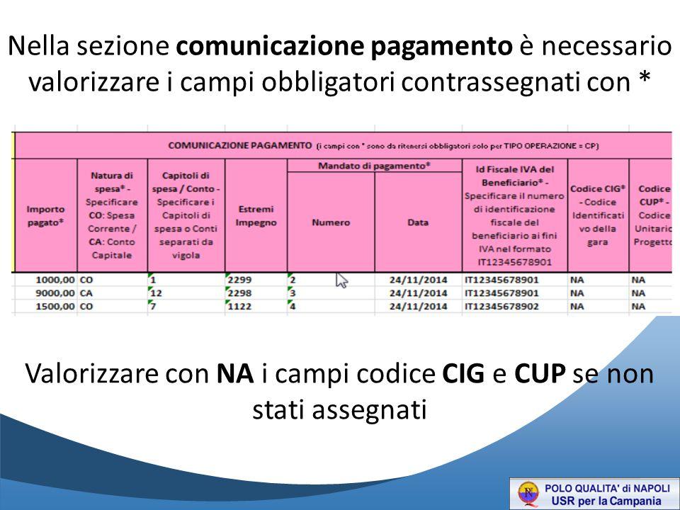 Nella sezione comunicazione pagamento è necessario valorizzare i campi obbligatori contrassegnati con * Valorizzare con NA i campi codice CIG e CUP se non stati assegnati