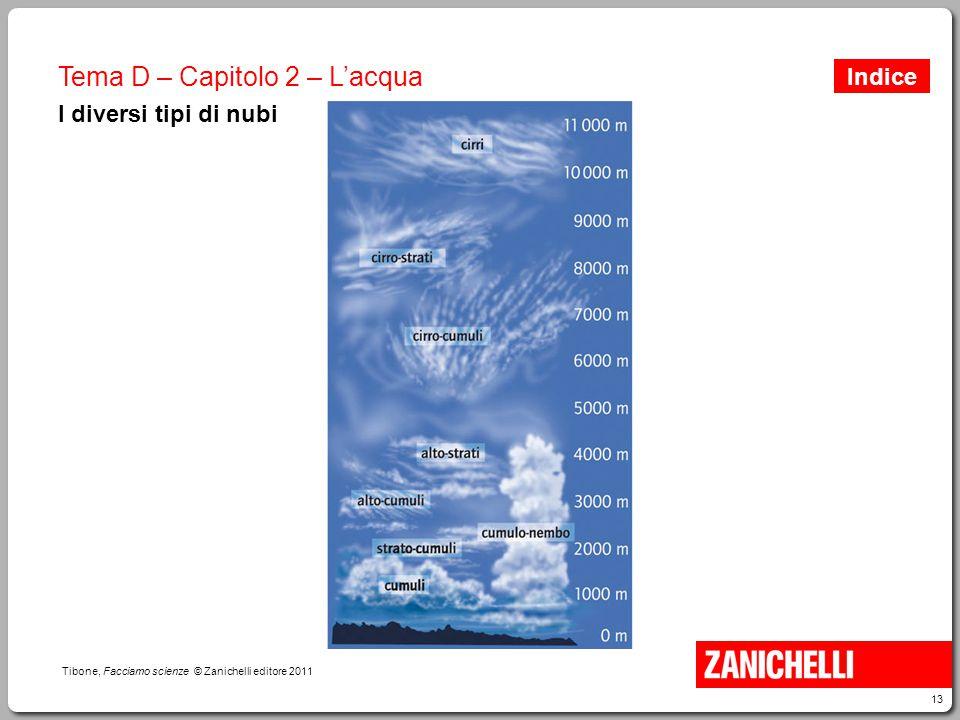 13 Tibone, Facciamo scienze © Zanichelli editore 2011 Tema D – Capitolo 2 – L'acqua I diversi tipi di nubi Indice