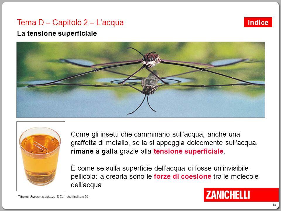 18 Tibone, Facciamo scienze © Zanichelli editore 2011 Tema D – Capitolo 2 – L'acqua La tensione superficiale Come gli insetti che camminano sull'acqua