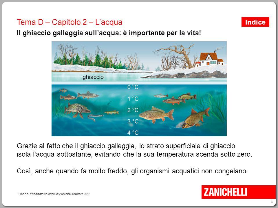 5 Tibone, Facciamo scienze © Zanichelli editore 2011 Tema D – Capitolo 2 – L'acqua Il ghiaccio galleggia sull'acqua: è importante per la vita! Grazie