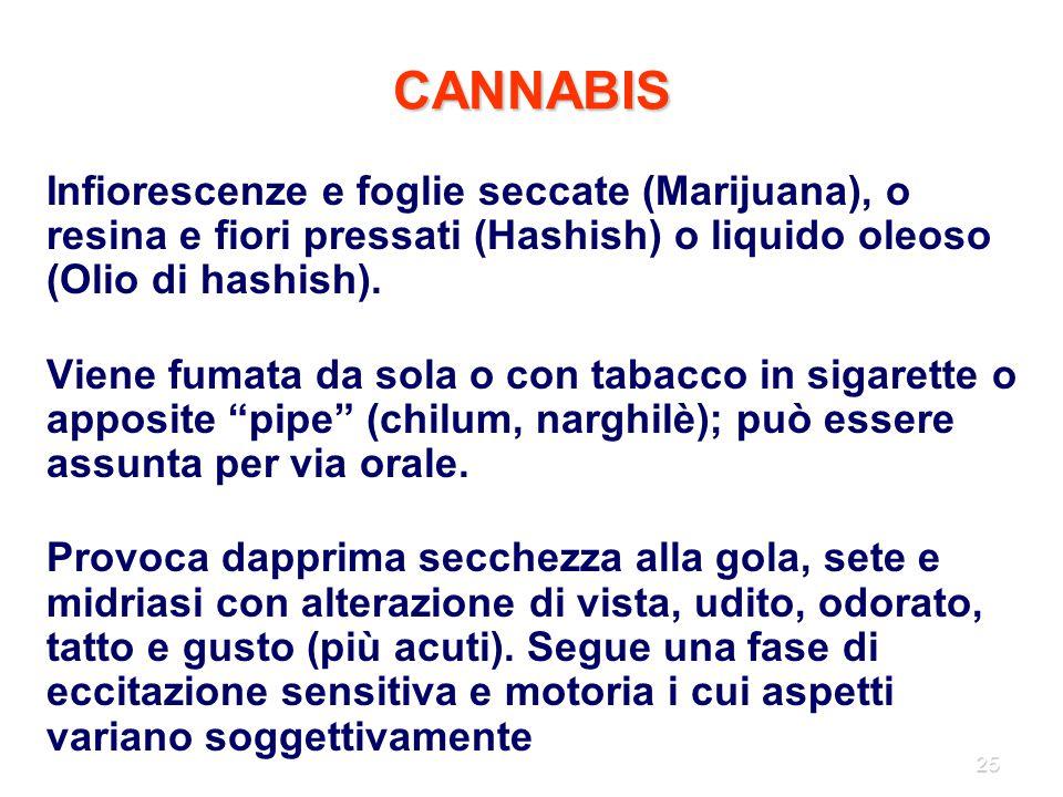 25 CANNABIS Infiorescenze e foglie seccate (Marijuana), o resina e fiori pressati (Hashish) o liquido oleoso (Olio di hashish). Viene fumata da sola o