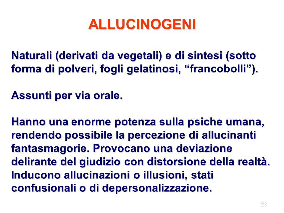 """28 ALLUCINOGENI Naturali (derivati da vegetali) e di sintesi (sotto forma di polveri, fogli gelatinosi, """"""""). Naturali (derivati da vegetali) e di sint"""