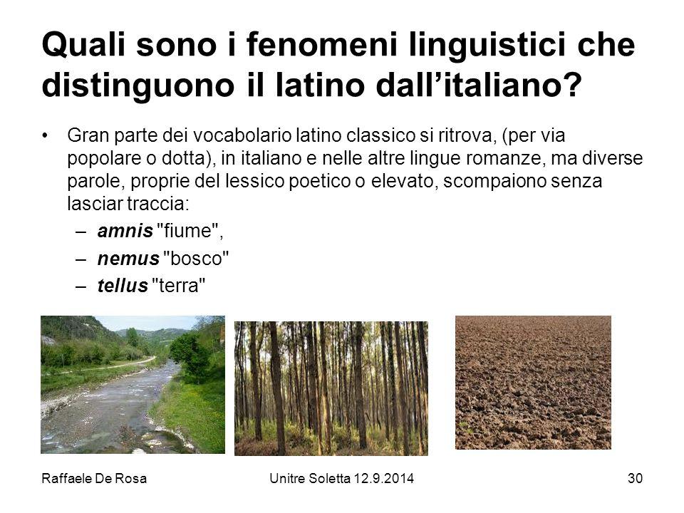 Raffaele De RosaUnitre Soletta 12.9.201430 Quali sono i fenomeni linguistici che distinguono il latino dall'italiano.