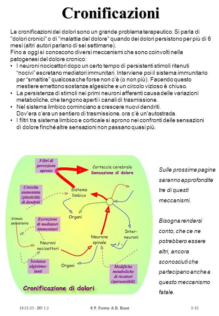19.01.05 - DN 1.3© P. Forster & B. Buser3/10 Cronificazioni Le cronificazioni dei dolori sono un grande problema terapeutico. Si parla di