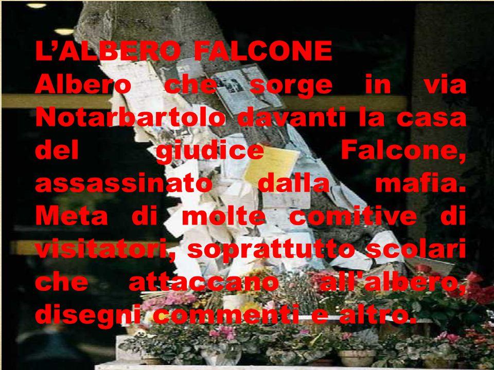 L'ALBERO FALCONE Albero che sorge in via Notarbartolo davanti la casa del giudice Falcone, assassinato dalla mafia. Meta di molte comitive di visitato