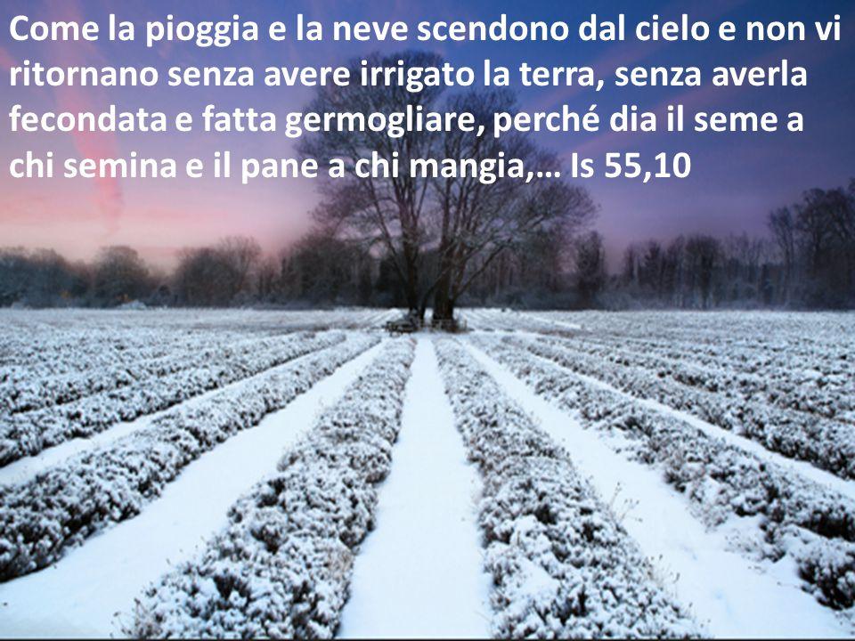 Come la pioggia e la neve scendono dal cielo e non vi ritornano senza avere irrigato la terra, senza averla fecondata e fatta germogliare, perché dia