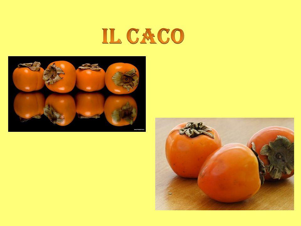 I cachi sono frutti ricchi di vitamine e zuccheri, di solito si consumano freschi quando sono belli maturi e dolci.