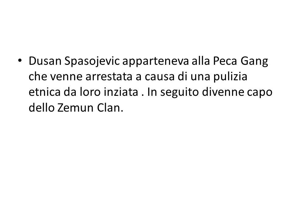 Dusan Spasojevic apparteneva alla Peca Gang che venne arrestata a causa di una pulizia etnica da loro inziata. In seguito divenne capo dello Zemun Cla