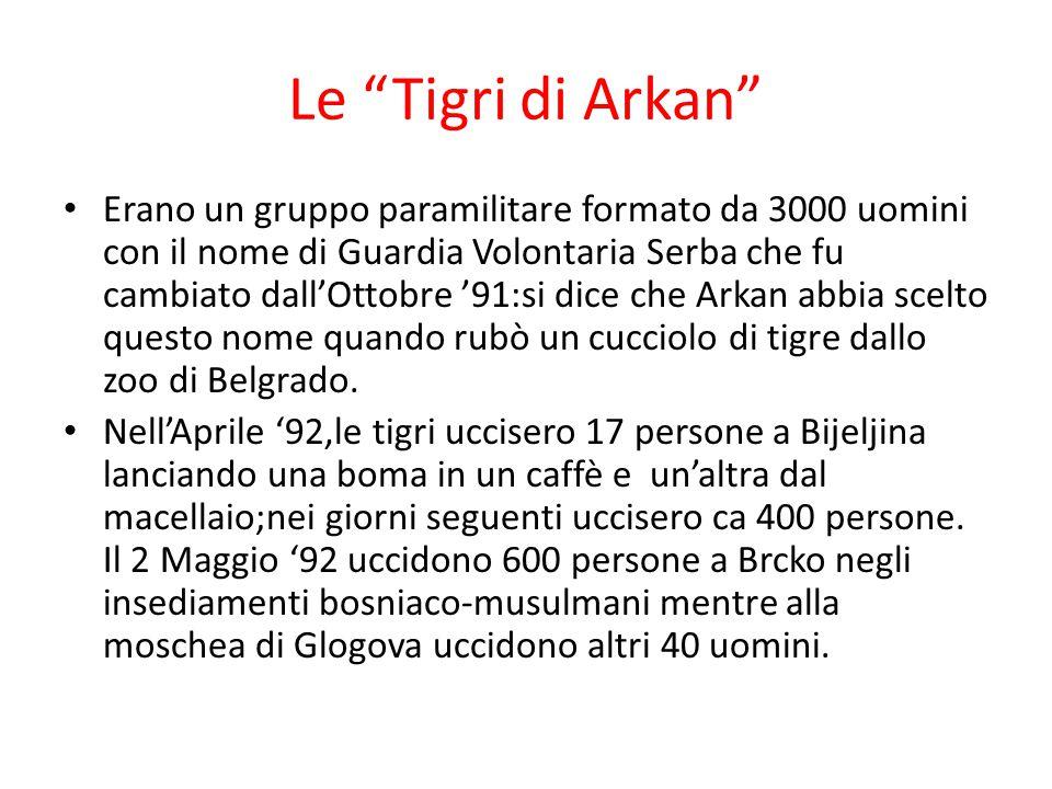 Le Tigri di Arkan Erano un gruppo paramilitare formato da 3000 uomini con il nome di Guardia Volontaria Serba che fu cambiato dall'Ottobre '91:si dice che Arkan abbia scelto questo nome quando rubò un cucciolo di tigre dallo zoo di Belgrado.