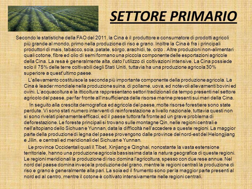 SETTORE PRIMARIO Secondo le statistiche della FAO del 2011, la Cina è il produttore e consumatore di prodotti agricoli più grande al mondo, primo nell