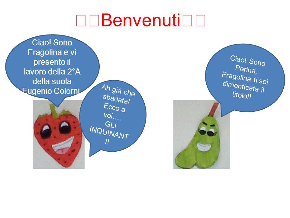 Scuola secondaria di 1° grado Eugenio Colorni (ICS Gattamelata) Via Paolo Uccello 1/A Milano classe 2°A Anno scolastico 2014-15 Prof Bedini
