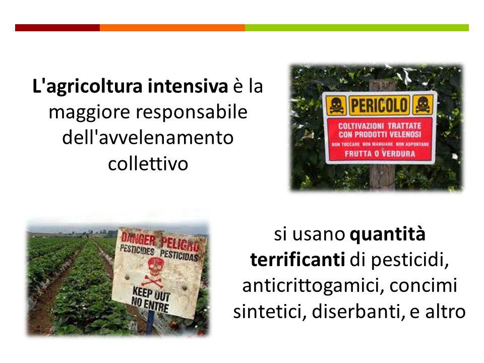 l'Italia ha leggi severissime, siamo ben protetti.. Siamo sicuri di questo? I legislatori si basano sui rapporti elaborati da commissioni scientifiche