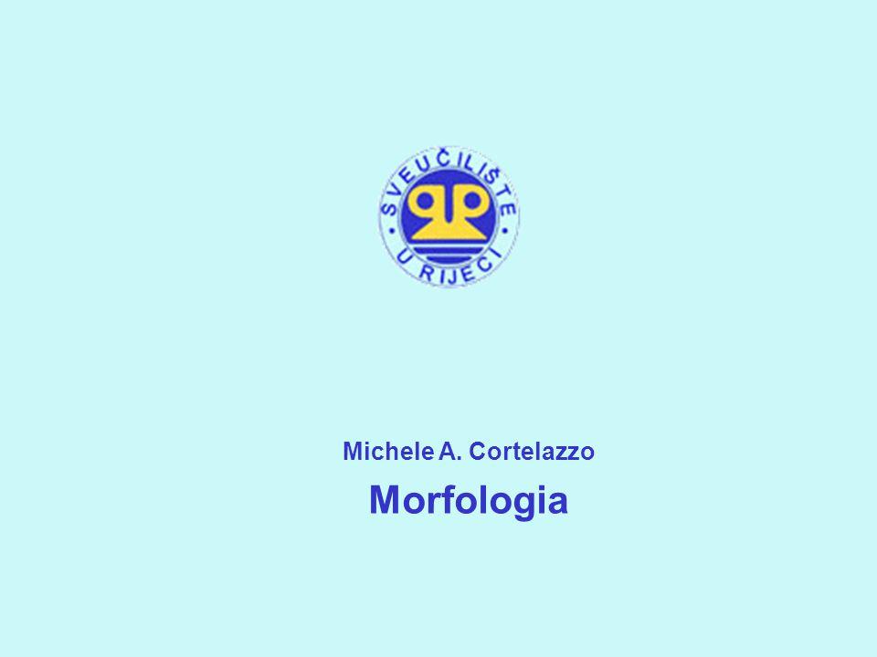 Michele Cortelazzo Morfologia la lezione di oggi Le parti del discorso.