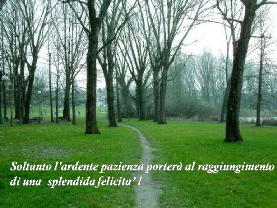 Pablo Neruda - Immagini dei Laghi di Mantova.