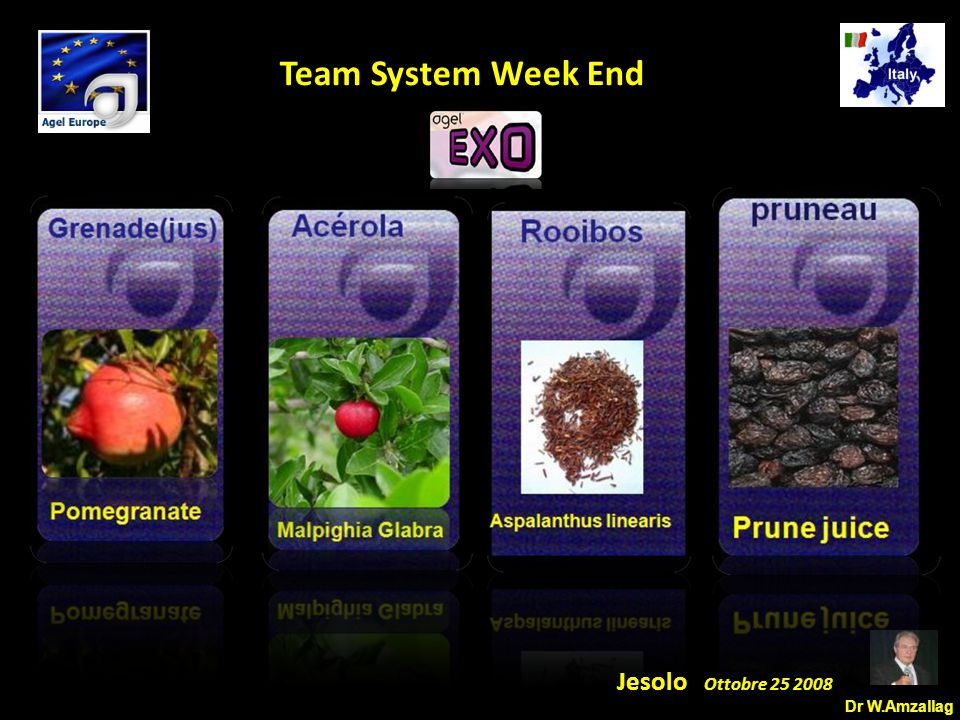 Dr W.Amzallag Jesolo Ottobre 25 2008 5 Team System Week End